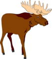 Free Stock Photo: Illustration of a brown moose
