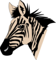 Free Stock Photo: Illustration of a zebra head