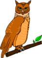 Free Stock Photo: Illustration of an owl perched on a branch