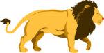 Free Stock Photo: Illustration of a lion
