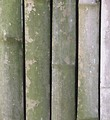 Free Stock Photo: Closeup of a bamboo fence