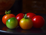 Free Stock Photo: A group of small tomatoes