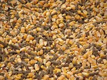 Free Stock Photo: Closeup of animal feed with corn