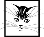 Free Stock Photo: Illustration of a kitten face