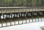 Free Stock Photo: A wooden bridge across a small lake