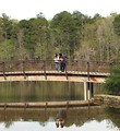 Free Stock Photo: A man and woman standing on a bridge over a pond