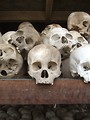 Free Stock Photo: Skulls from the stupa memorial at the killing fields of Choeung Ek, near Phnom Penh, Cambodia