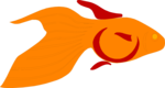 Free Stock Photo: Illustration of a goldfish