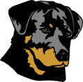 Free Stock Photo: Illustration of a rottweiler dog head