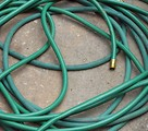 Free Stock Photo: A green garden hose
