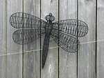 Free Stock Photo: A wire dragonfly sculputure on a wooden fence
