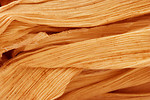 Free Stock Photo: Close-up of a dried corn husk