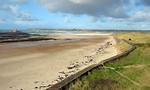 Free Stock Photo: A long beach