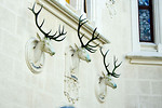 Free Stock Photo: Stone deer busts on a castle wall