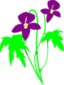 Free Stock Photo: Illustration of purple flowers
