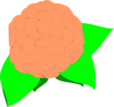 Free Stock Photo: Illustration of a camellia flower