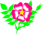 Free Stock Photo: Illustration of a pink flower