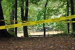 Free Stock Photo: A flooded river in the woods surrounded by caution tape