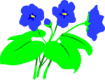 Free Stock Photo: Illustration of blue flowers