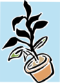 Free Stock Photo: Illustration of a potted plant