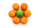 Free Stock Photo: Citrus fruit isolated on a white background