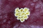 Free Stock Photo: A heart made of white roses