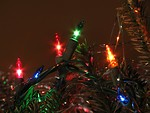 Free Stock Photo: Close-up of Christmas lights on a tree