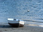 Free Stock Photo: A row boat on the shore of the sea