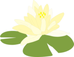 Free Stock Photo: Illustration of a flower on a lily pad