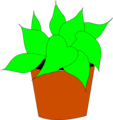 Free Stock Photo: Illustration of a potted house plant